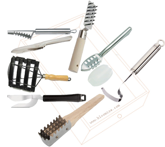 Fish scaler etc bloomize for Best fish scaler
