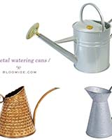 watering can etc